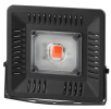 FITO-50W-LED BLUERED