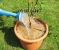 кокосовое волокно D90см